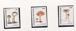 1998 COTE D'IVOIRE - Champignons