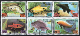 BENIN - 1999 - PESCI - FISHES - USATI - Benin – Dahomey (1960-...)