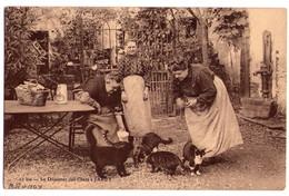 D026 - Le Déjeuner Des Chats à Jarcy - M.Mulard édit. à Yerres - N° 10bis - - Brunoy