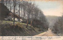 Angleterre - Petersfield - Langrish 1906 - Autres