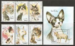Afghanistan 1996 Mi# 1701-1706, Block 91 Used - Cats - Afganistán