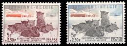 Belgium 1030/31**  Expédition Antartique Chiens  MNH - Neufs