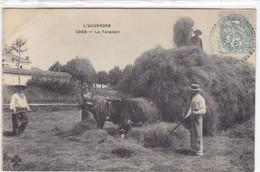 Vosges - L'Auvergne - La Fenaison - Epinal