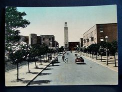 (FG.A44) SABAUDIA - CORSO VITTORIO EMANUELE II E TORRE CIVICA (LATINA) Animata Auto Cars Voitures - VIAGGIATA 1954 - Latina
