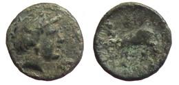 [H] +++ AE17 - ARGOS -- Dichalkon - Apollo / Wolf +++ - Griechische Münzen