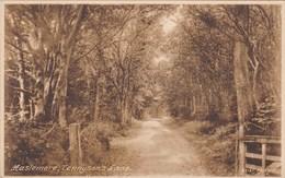 HASLEMERE - TENNYSONS LANE - Surrey