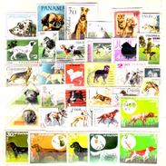 232  Chiens - Dogs - Lot - Free Shipping - 1,50 - Perros