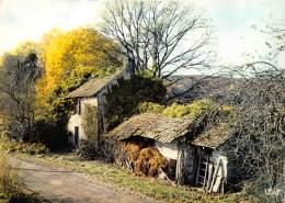 En Limousin Vieille Ferme Typique 11(scan Recto-verso) MA388 - France