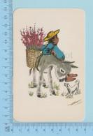 Magrol - Mexico Tipico - Illustratori & Fotografie