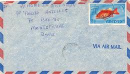GRENADA - 1971 ,  Fisch , Brief Nach Montserrat - Trinidad & Tobago (1962-...)