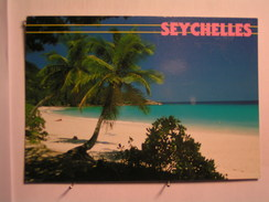 Les Seychelles - Beach On Mahe - Seychelles