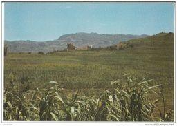 Yemen Del Nord (Ex) - A View OfAlhagrah Village - Yemen