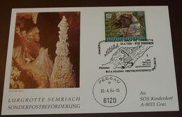 Österreich Höle Lurgrotte Semriach Peggau Sonderpostbeförderung  SOS Kinderdorf   1993   #cover 3956 - Geologia