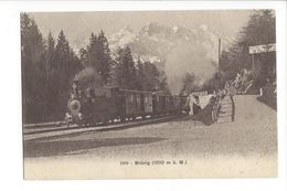 18529 - Brünig Train - BE Berne