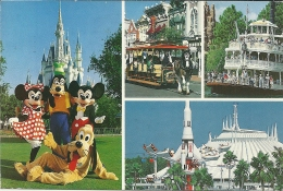USA Florida Disneyworld / Mickey Minnie Goofy Pluto - Disneyworld
