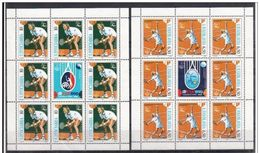 YUGOSLAVIA 1990 TENNIS 2 SHEETLETS - Tennis