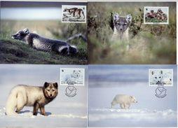 FINLAND 1993 Arctic Fox Set Of 4 Maximum Cards.  Michel 1202-05 - Finland