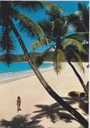 SEYCHELLES - MAHÉ - VUE DE LA BAIE - Seychelles