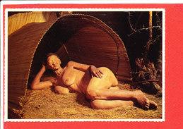 FEMME SEINS NU AFRIQUE Du SUD Cp Animée  Old Bushman Woman           288 A  Athur - Afrique Du Sud, Est, Ouest