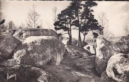 91----NAINVILLE LES ROCHES---les Roches---voir 2 Scans - Autres Communes