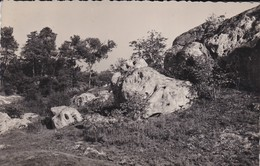 91----RARE---MAISSE---les Roches--voir 2 Scans - Autres Communes
