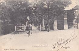 Cappellen : Avenue De La Bruyère - Kapellen