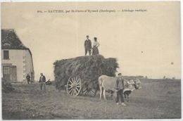 24. SAUTIER. PAR ST PIERRE D EYRAUD.  ATTELAGE - France
