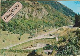88 Bussang - Cpm / Col De Bussang Et Source De La Moselle. - Bussang