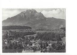 18550 - Hotel St.Niklausen Luzern (format 10X15) - LU Lucerne