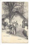 18567 -   Etude Villageoise Dorfstudie Paysans Et Vaches - Suisse