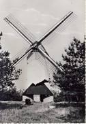 Overpelt Windmolen Het Weelde - Overpelt