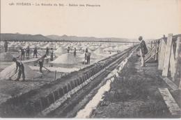 Cpa HYERES - La Récolte Du Sel - Salins Des Pesquiers - Hyeres
