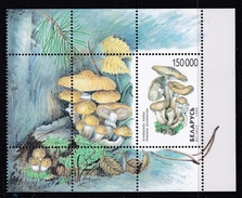 Feuillet ** Neuf + 4 Timbres **de  Belarussie (1999) Champignon - Champignons