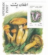 Feuillet Neuf ** + 6 Timbres Neufs ** D'Afghanistan Champignon - Champignons