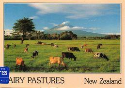 New Zealand - Mont Taranaki - Cm. 16,3 X 11,5 - Nuova Zelanda