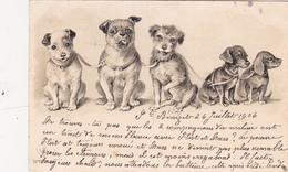 CPA Gaufrée Cinq Chiens Dont Deux Teckel Dackel Daschsund Taka Bassotto Basset Dog Embossed (2 Scans) - Hunde