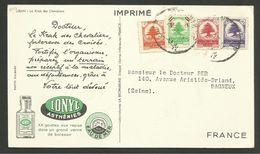 """Carte / Card Pub """" Laboratoires IONYL """"  / Le Krak Des Chevaliers - Liban"""