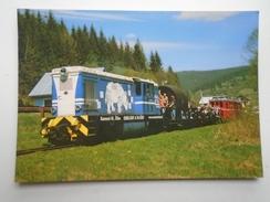 D156212 Train Railway Rail - Ciernohornskej Lesnej Zeleznici  Jededo Vydorova - Rhino Rhinoceros - Trenes