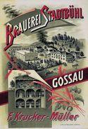 Brauerei Stadtbühl Gossau F.Krucker-Müller Schweiz - Postcard Reproduction - Publicité