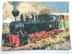 D156260 Train Railway Rail   -Királyrét  -Erdei Vasút -Forest Railway -Engine  MORGÓ - Treni