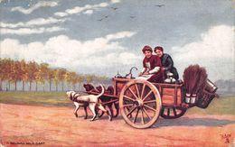 Belgique - Attelage à Chiens - Lait Laitière - Belgian Milk Cart - Illustration Tuck - Belgium