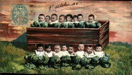Bébés Multiples 275, Bac De Choux (carte Réduite - Babies