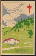 °°° 10124 - FESTA DEL FIORE A FAVORE DEI CONSORZI ANTITUBERCOLARI - 1930 ANNO VIII °°° - Manifestations