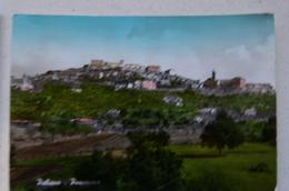 PALIANO (FROSINONE) - PANORAMA - Frosinone