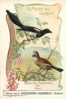 191217A CHROMO CHOCOLAT AIGUEBELLE Drôme - Monde Des Oiseaux - Ordre Passereaux - Pie Geai - Aiguebelle