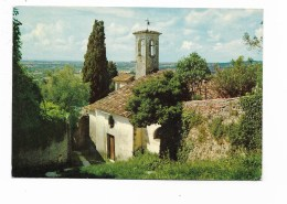 CONEGLIANO - CHIESETTA MADONNA DELLA  NEVE - VIAGGIATA FG - Treviso