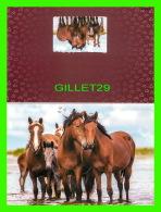 CHEVAUX - HORSES -  UNE FAMILLE EN AMOUR - CARTE DOUBLE - - Chevaux