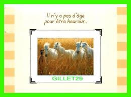 CHEVAUX - HORSES -  IL N'Y A PAS D'ÂGE POUR ÊTRE HEUREUX - CIRCULÉE EN 2003 - - Chevaux