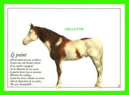 CHEVAUX - HORSES - LE PAINT, CHEVAL AMÉRICAIN - ILLUSTRATION, PHILIPPE MEYRIER - - Chevaux