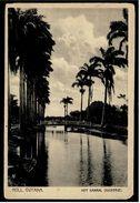 Holl. Guyana  -  Het Kanaal / Nickerie   -  Ansichtskarte Ca. 1910    (8027) - Suriname